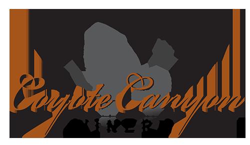 CCW-logo-web
